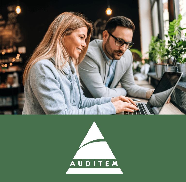 Auditem - Audit, statutory audit